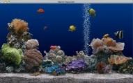 Marine Aquarium 2 (2003)