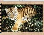 Das Lexikon der Tiere (1996)