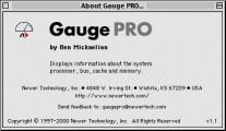Gauge Pro (2000)