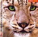 World Book 2012 (2012)