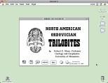 North American Ordovician Trilobites v0.81 (1988)