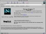Netscape Navigator 2.x (1996)