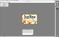 StatView 5 (2002)