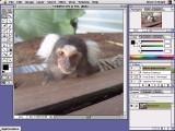 Adobe Photoshop 4.0 (1996)