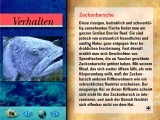 Ocean Life Volume 4: Great Barrier Reef (1994)