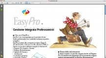 EasyPro AIG Demo (1997)