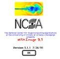 NCSA Image (1991)