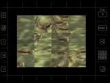 Moving Puzzle - Wild Life (1997)