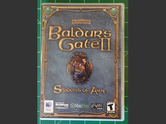 Baldur's Gate II: Shadows of Amn (2001)