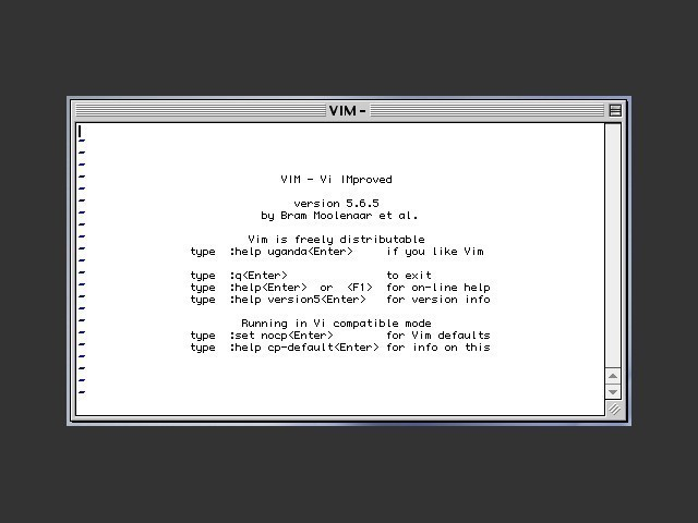VIM in action
