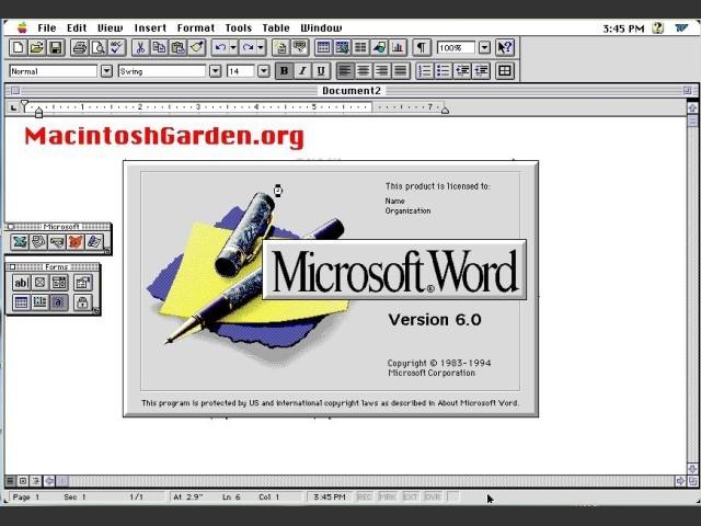 Microsoft Word 6 (1994)