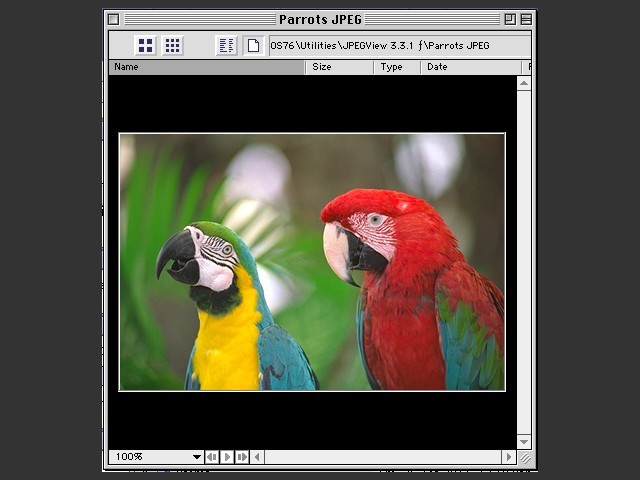 ImageViewer 5.1 (1997)