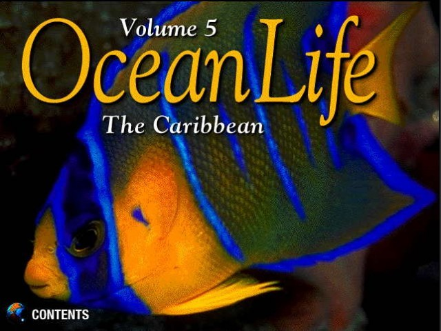 Ocean Life Volume 5: The Caribbean (1996)