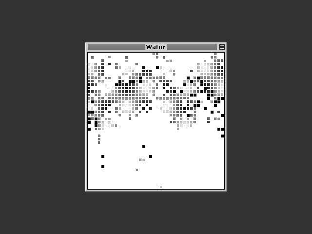 Wator (1985)
