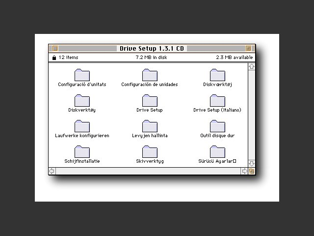 CD content: Localized sets of Drive Setup 1.3.1