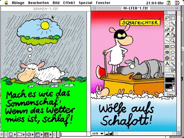"""Do it like the sun Sheep: When the weather is lousy, sleep!"""