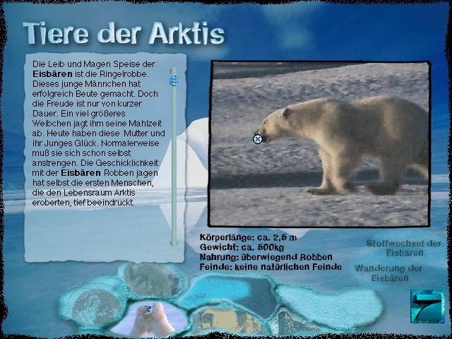 Animals of the Arctic.