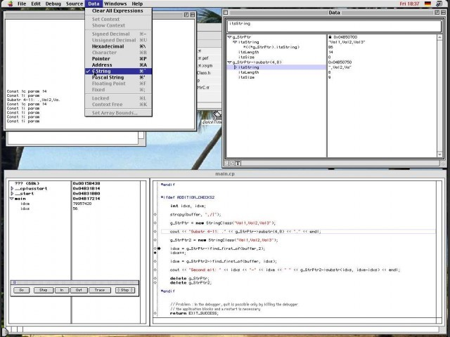 Debugger with data format display selection